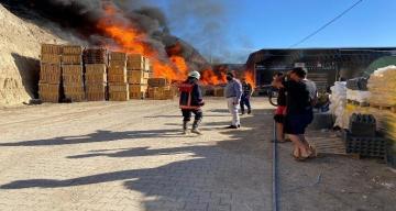 Mersin'de soğuk hava deposunda çıkan yangın söndürüldü
