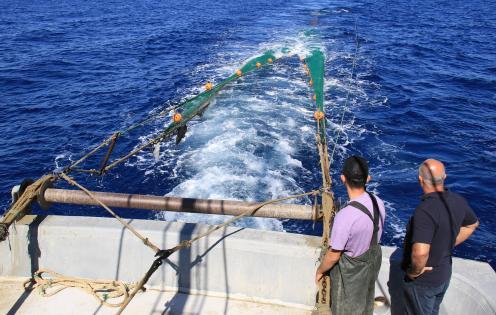 Akdeniz'de balıktan çok çöp çıkıyor, balıkçı nadas istiyor